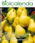 biolcada project